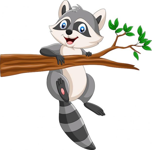 Guaxinim dos desenhos animados no galho de árvore