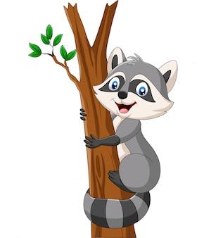 Guaxinim dos desenhos animados que escala na árvore