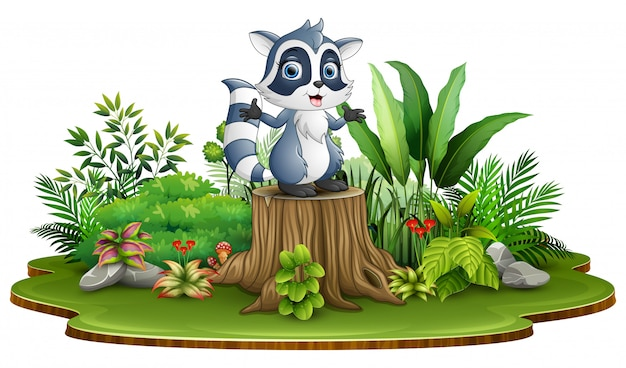Guaxinim feliz dos desenhos animados que está no coto de árvore com plantas verdes