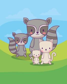 Guaxinins bonitos e gatos