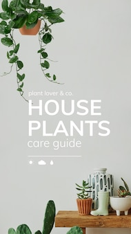 Guia de cuidados de vetor de modelo amante de plantas