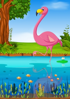 Guindaste pássaro no rio