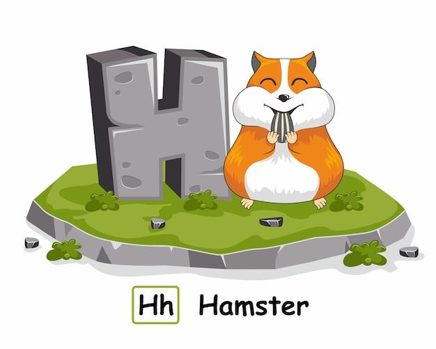 H for hamster animals rock stone alphabet