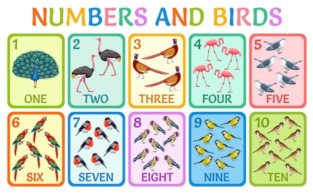 Ð h números de cartões de crianças com pássaros.