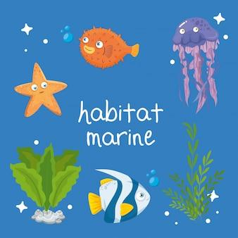 Habitat marinho, animais no oceano, habitantes do mundo marinho, criaturas subaquáticas fofas, fauna submarina