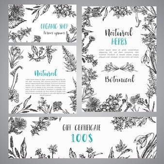 Hand drawn herbs and wild flowers banner coleção vintage