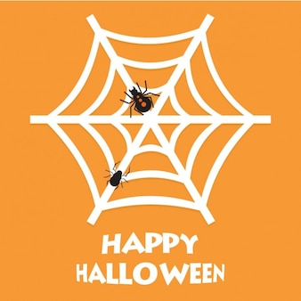 Happy halloween spider net