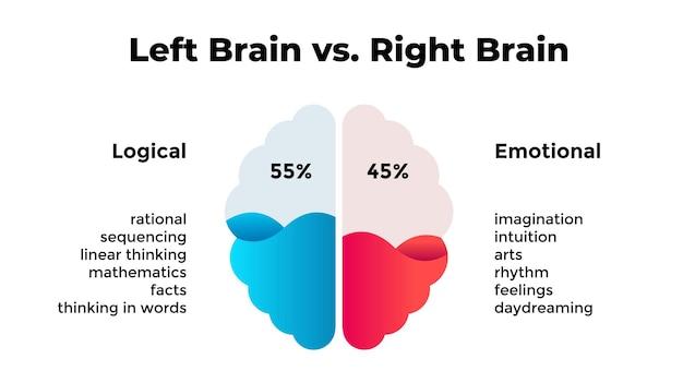Hemisférios esquerdo e direito do cérebro humano pensamento lógico x emocional infográfico criativo