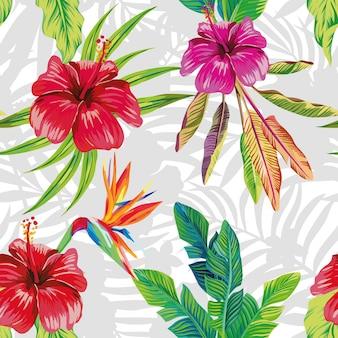 Hibisco ave do paraíso deixa padrão foliar sem costura cinza e branco