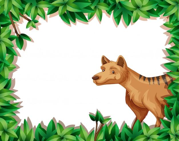 Hiena em quadro de natureza