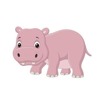 Hipopótamo bebê fofo em branco