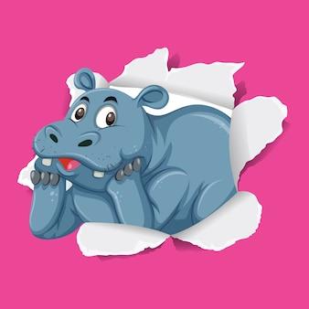 Hipopótamo selvagem em papel rosa