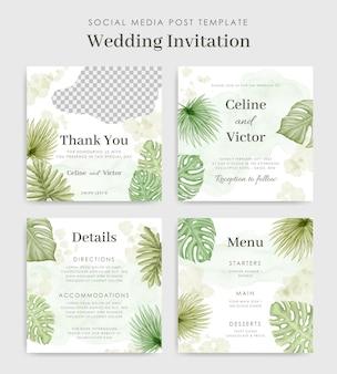 Histórias de convite de casamento no instagram com folhas tropicais em aquarela