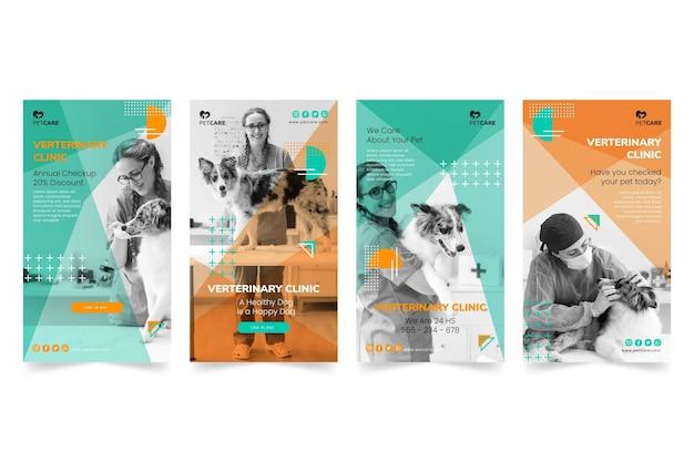 Histórias de instagram de clínica veterinária e animais de estimação saudáveis