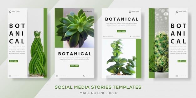 Histórias postar modelo de banner para a natureza verde floral.
