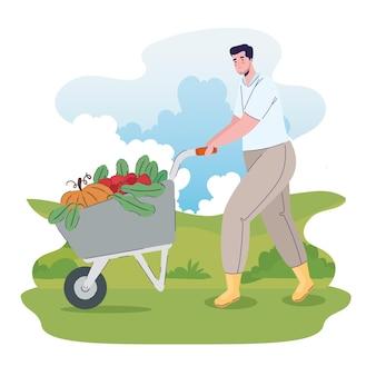 Homem agricultor com legumes em carrinho de mão na ilustração de campo