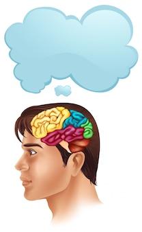 Homem, com, cérebro, diagrama, e, fala, bolha