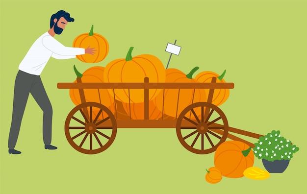 Homem e abóboras no carrinho de mão, colheita de outono