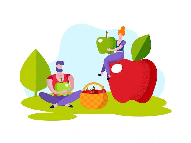 Homem e mulher colhem maçãs vermelhas na cesta.