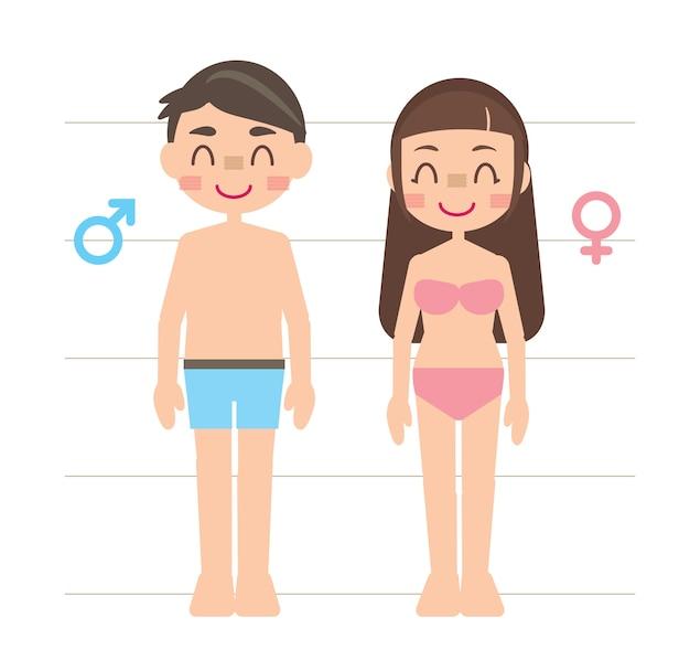 Homem e mulher manequim corpo humano ilustração personagem