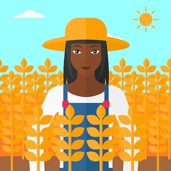 Homem no campo de trigo.