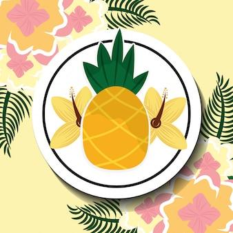 Horário de verão tropical