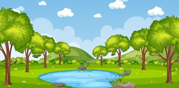 Horizonte natureza cena ou paisagem rural com vista para a floresta e céu em branco durante o dia