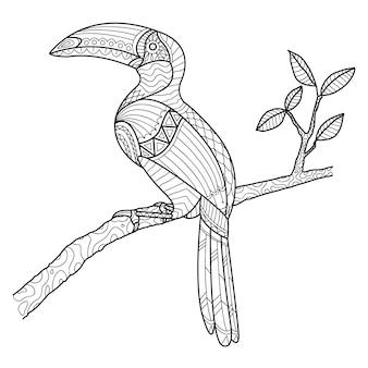 Hornbill coloring page mão desenhada