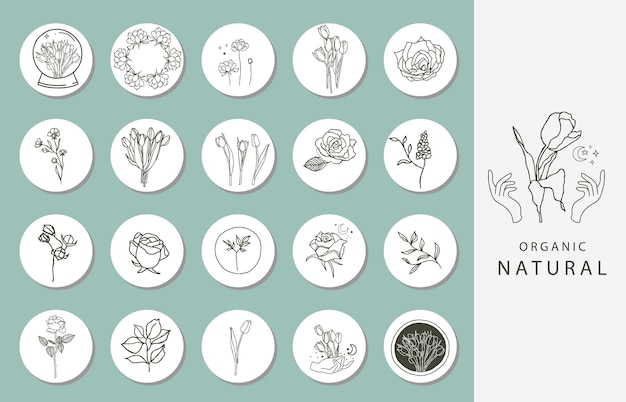 Ícone da capa de destaque do instagram com flor, magnólia e tulipa para mídia social