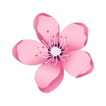 Ícone da flor akura delicadas pétalas da flor de cerejeira motivos da primavera