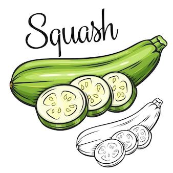 Ícone de desenho de squash