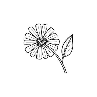 Ícone de doodle de contorno desenhado de mão de flor margarida. flor da margarida do campo com uma ilustração do esboço do vetor pétala para impressão, web, mobile e infográficos isolados no fundo branco.