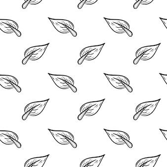 Ícone de doodle de folha padrão sem emenda handdrawn. esboço preto desenhado de mão. símbolo do sinal. elemento de decoração. fundo branco. isolado. design plano. ilustração vetorial.