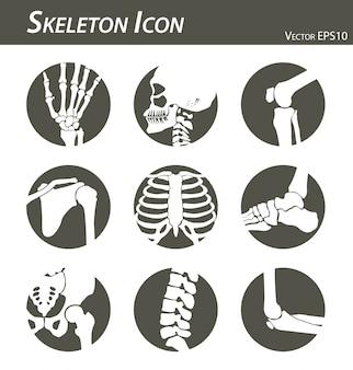 Ícone de esqueleto