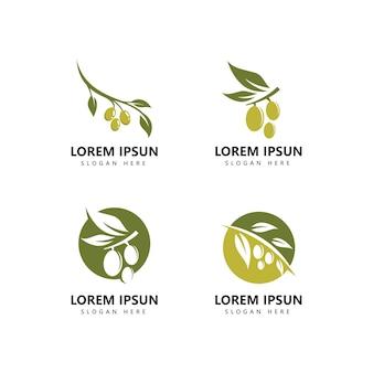 Ícone de logotipo de oliva e vetor de modelo de logotipo de azeite