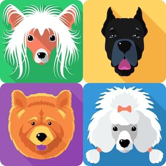 Ícone de rosto da raça chinese crested e cane corso plana design