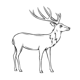 Ícone de veado. distintivo de contorno de rena selvagem. animal do zoológico.