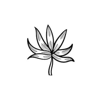 Ícone do doodle do contorno da folha da planta desenhada mão do vetor. ilustração do esboço da folha da planta para impressão, web, mobile e infográficos isolados no fundo branco.