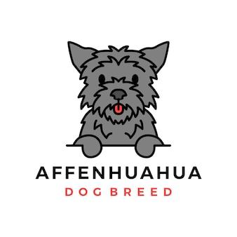 Ícone do logotipo do cachorro affenhuahua