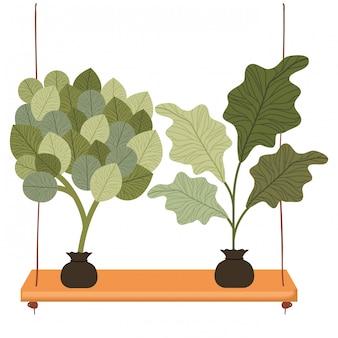 Ícone isolado de plantas de prateleira