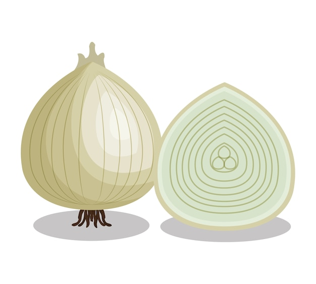 Ícone isolado vegetal de cebola fresca