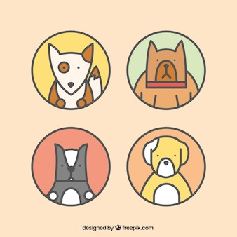 Ícones cão