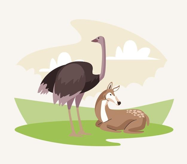 Ícones da natureza dos animais selvagens de avestruz e gazela