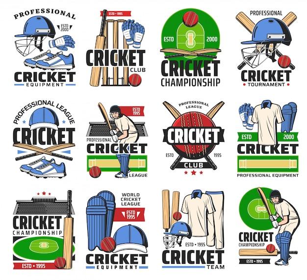 Ícones de bola, taco, jogador e estádio do esporte de críquete