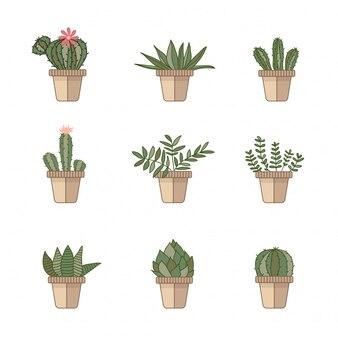 Ícones de cacto em um estilo simples em um fundo branco
