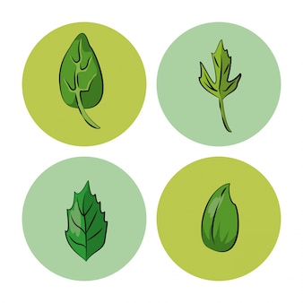 Ícones de ervas e especiarias sobre fundo branco