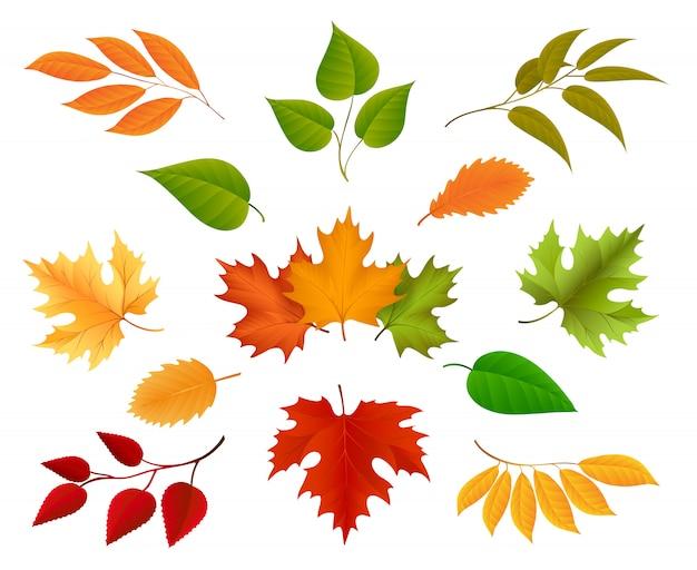 Ícones de folhas de outono