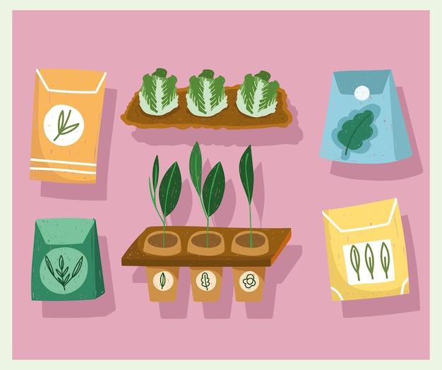 Ícones de jardinagem definir sementes e plantas de plantação de repolho ilustração colorida desenhada à mão