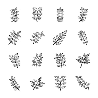 Ícones de linha de folhas de árvore