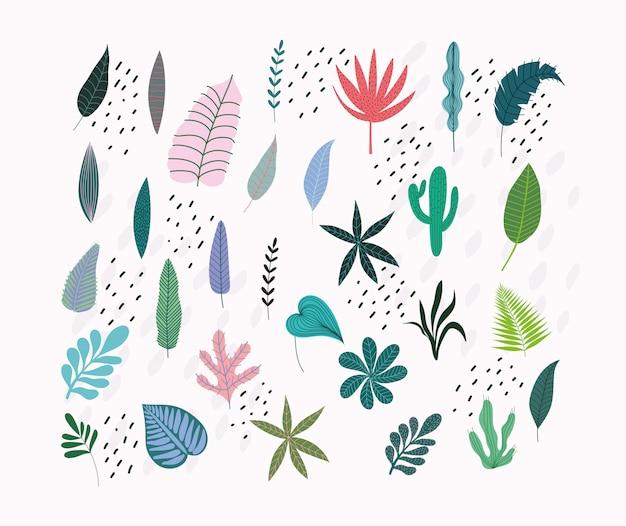 Ícones de natureza botanical de folhagem de folhas tropicais diferentes isolados